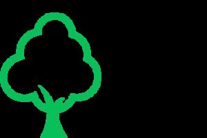 tree services north brisbane